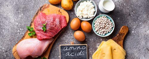 Acides Aminés : Définition, Bénéfices Et Aliments à Privilégier