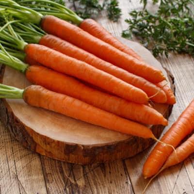 Carottes-légumes-anciens