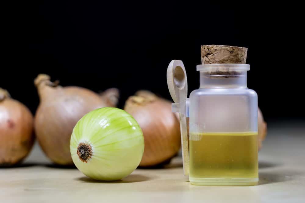 Creme Oignon Healthy