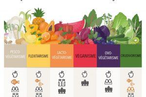 6 Formes D'alimentation Végétale