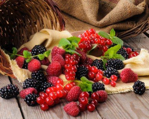 Les Fruits Rouges Sont De Retour Au Printemps